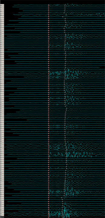 Nearest neighbour aligned seismic traces image